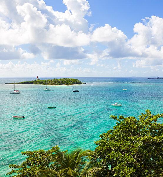 Traduire vos plans de traitement en devis – Gosiers, Guadeloupe